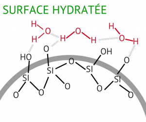 Adsorption en surface hydratée
